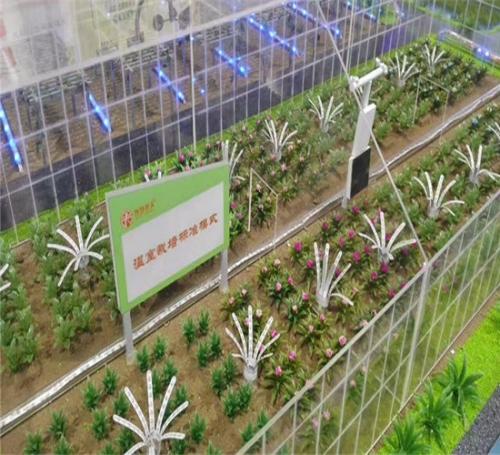 农业丛植基地模型细节